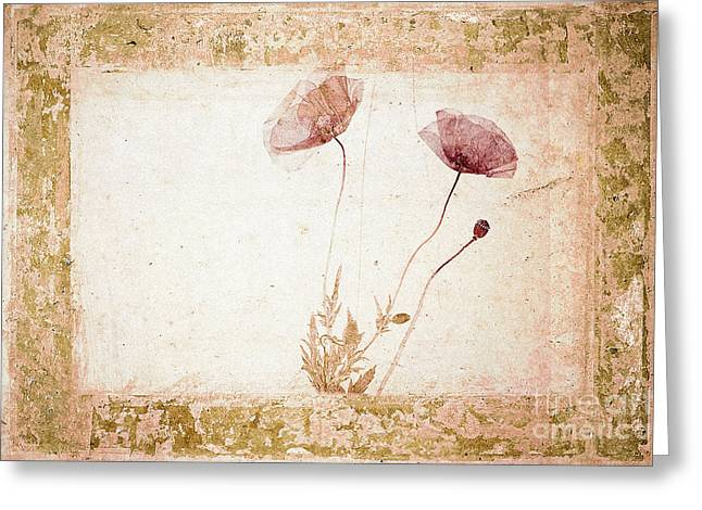 Red Poppy Greeting Card by Jochen Schoenfeld