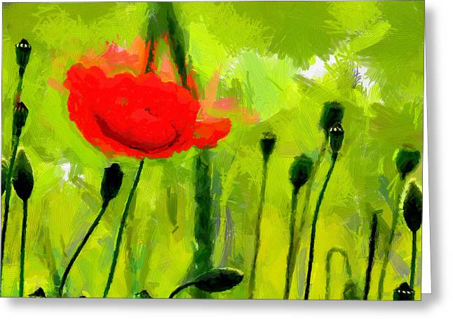 Vincent Dinovici Greeting Cards - Red Poppy TNM Greeting Card by Vincent DiNovici
