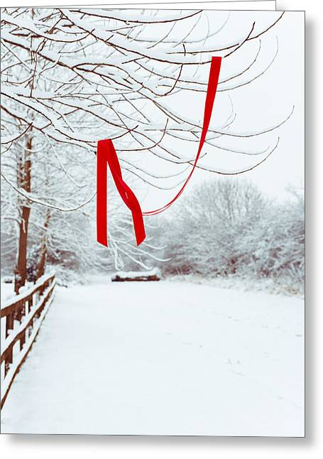 Fence Line Greeting Cards - Red Ribbon In Tree Greeting Card by Amanda And Christopher Elwell
