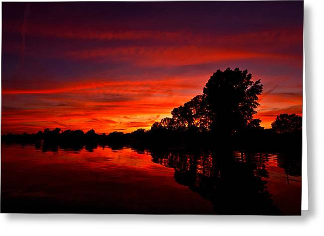 Red Ripples Greeting Card by Matt Molloy
