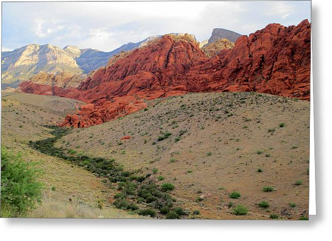 Scenic Drive Greeting Cards - Red  Rock Canyon 2014 Number 10 Greeting Card by Randall Weidner