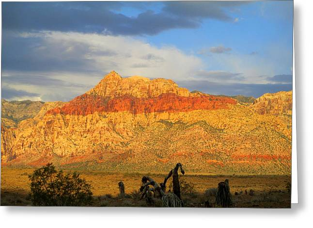 Scenic Drive Greeting Cards - Red Rock Canyon 2014 Number 5 Greeting Card by Randall Weidner