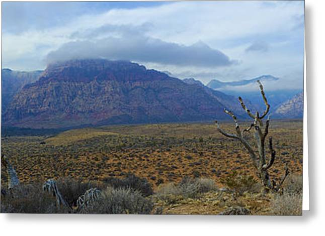 Red Rock Canyon Greeting Card by C Sakura