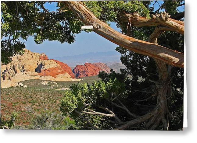 Firsts Pyrography Greeting Cards - Red Rock Canyon Greeting Card by Carol Bilodeau