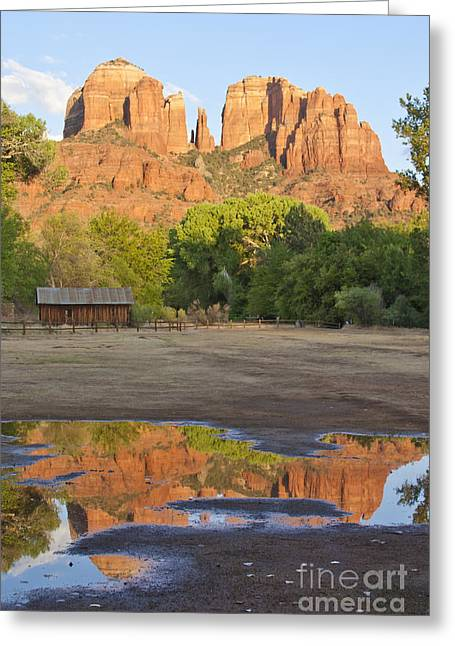 Red Rock Crossing Greeting Cards - Red Rock Crossing Greeting Card by Ruth Jolly