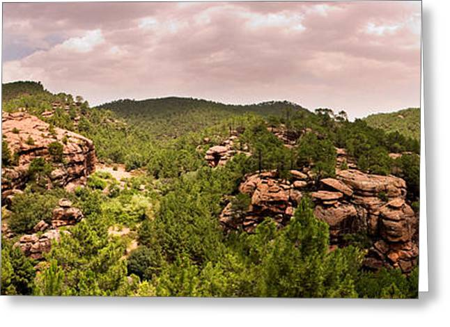 Teruel Greeting Cards - Red Rock Green Forest No2 Greeting Card by Weston Westmoreland
