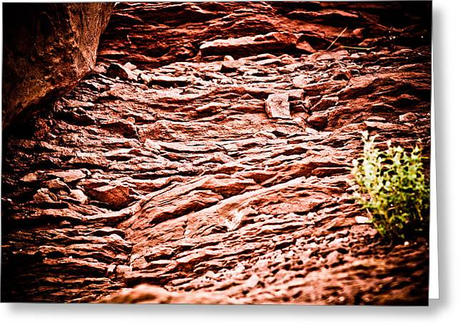 Landscape Ceramics Greeting Cards - Red Rocks at Meteor Crater Greeting Card by Glenn Student