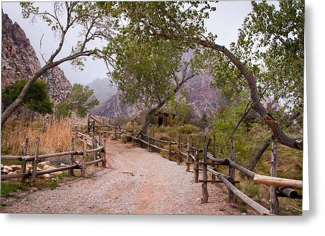 Iron Oxide Greeting Cards - Red Rocks Pathway Greeting Card by David Patterson