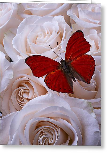 Gorgeous Flowers Greeting Cards - Red Romantic Butterfly Greeting Card by Garry Gay