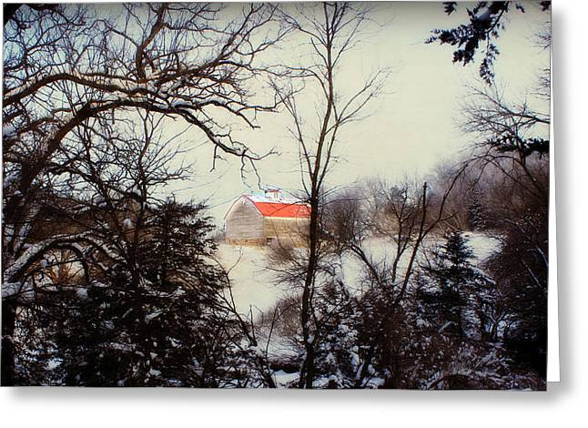 Country Shed Greeting Cards - Red Roof Barn Greeting Card by Julie Hamilton