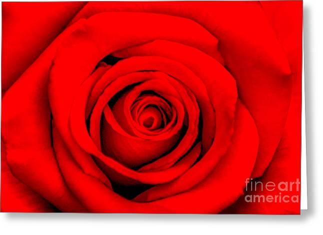 May Greeting Cards - Red Rose 1 Greeting Card by Az Jackson