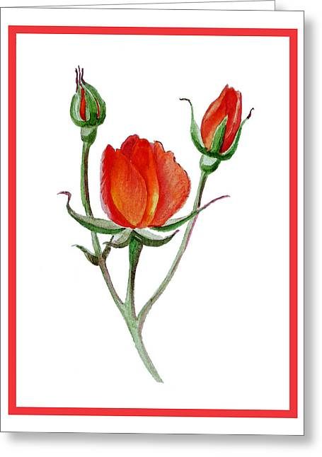 Roses Greeting Cards - Red Rose Greeting Card by Irina Sztukowski