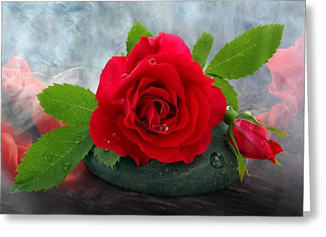 Ston Greeting Cards - Red Rose Greeting Card by Manfred Lutzius