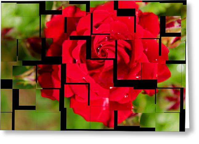 Red Rose Puzzle Greeting Card by Julia Fine Art And Photography