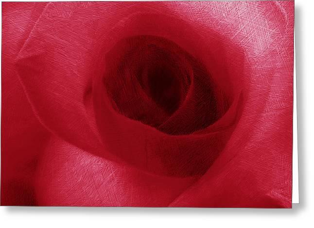 Tony Drawings Greeting Cards - Red Rose Greeting Card by Tony Rubino