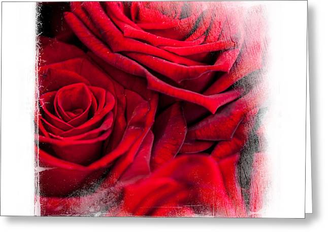 Valentine Gift Ideas Greeting Cards - Red Roses. Elegant KnickKnacks Greeting Card by Jenny Rainbow