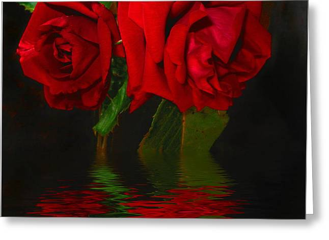 Numbers Plus Photography Digital Greeting Cards - Red Roses Reflected Greeting Card by Joyce Dickens