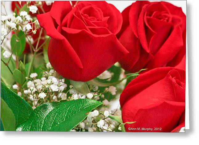 Photographs With Red. Greeting Cards - Red Roses with Babys Breath Greeting Card by Ann  Murphy