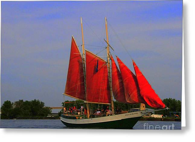 Schooner Greeting Cards - Red Sails Greeting Card by Kathleen Struckle