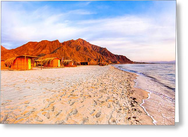 Sinai Mountain Greeting Cards - Red Sea Beach Paradise in Egypt Greeting Card by Mark Tisdale