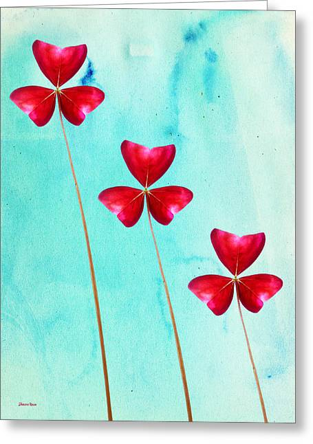 Ohio ist Digital Greeting Cards - Red Shamrock Trio Greeting Card by Shawna  Rowe