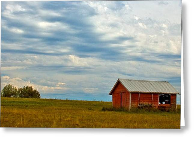 Sheds Greeting Cards - Red Shed Greeting Card by Chuck Flewelling