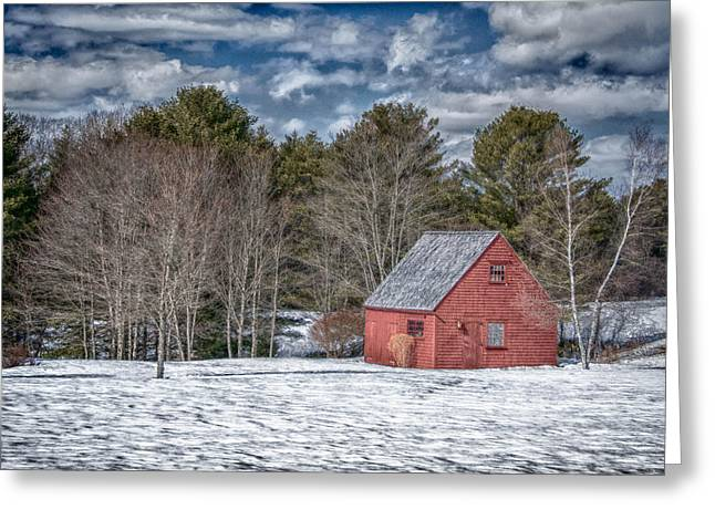 Maine Farmhouse Greeting Cards - Red Shed in Maine Greeting Card by Guy Whiteley