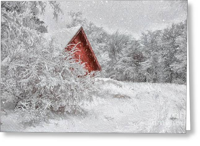 Sheds Greeting Cards - Red Shed In The Snow Greeting Card by Lois Bryan