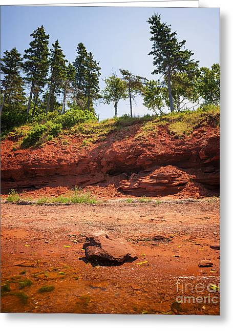 Red Shore Of Prince Edward Island Greeting Card by Elena Elisseeva