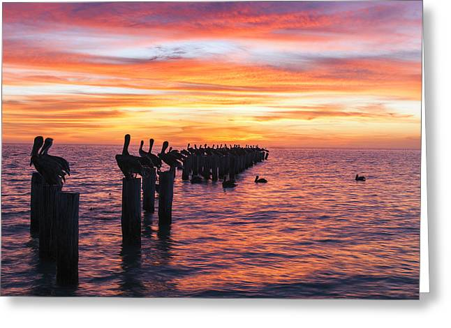 Naples Photographs Greeting Cards - Red Sky at Night Greeting Card by Mike Lang