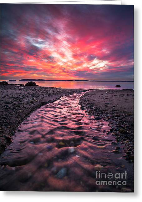 Harpswell Greeting Cards - Red Sky Greeting Card by Benjamin Williamson