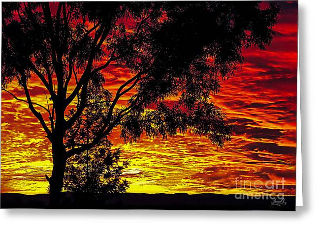 Skyclouds Greeting Cards - Red Sky Greeting Card by Janice OConnor