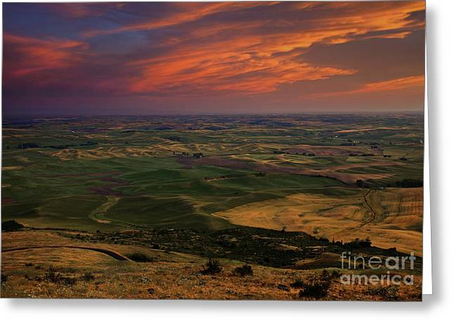 Red Sky Over The Palouse Greeting Card by Mike  Dawson