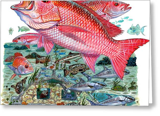 Jig Greeting Cards - Red Snapper Greeting Card by Carey Chen
