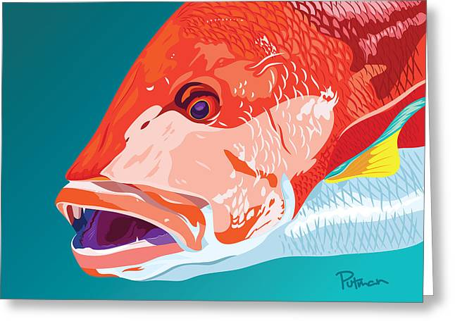 Snapper Greeting Cards - Red Snapper Colors Greeting Card by Kevin Putman