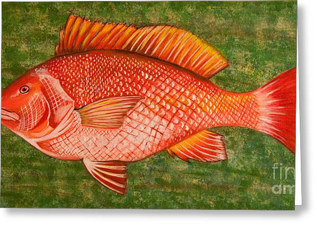 Red Snapper Greeting Cards - Red Snapper Greeting Card by Susan Cliett