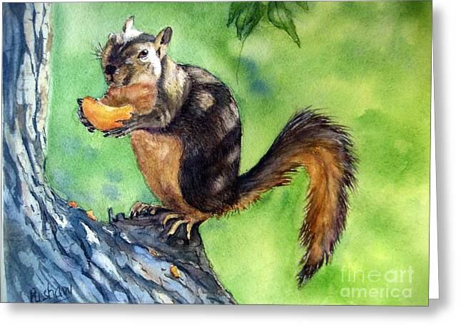 Backyard Wildlife Greeting Cards - Red squirrel and orange  Greeting Card by Patricia Pushaw