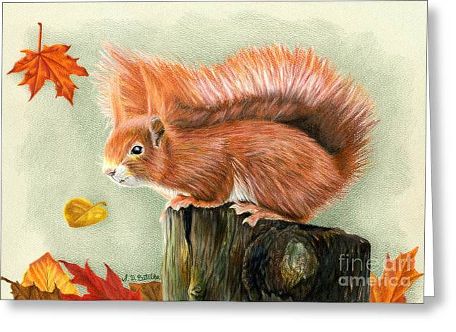 Squirrel Drawings Greeting Cards - Red Squirrel In Autumn Greeting Card by Sarah Batalka