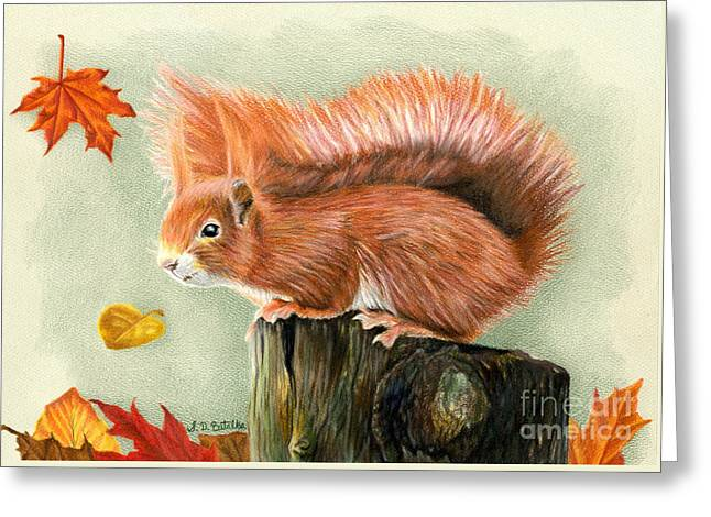 Fall Trees Drawings Greeting Cards - Red Squirrel In Autumn Greeting Card by Sarah Batalka