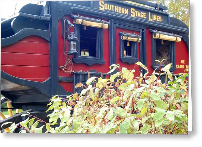 Old Western Photos Greeting Cards - Red Stagecoach  Greeting Card by Colleen Dyer