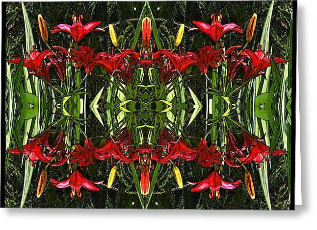 Day Lilly Digital Greeting Cards - Red Star of Day Lilly 2 Greeting Card by Carolyn Bornfleth