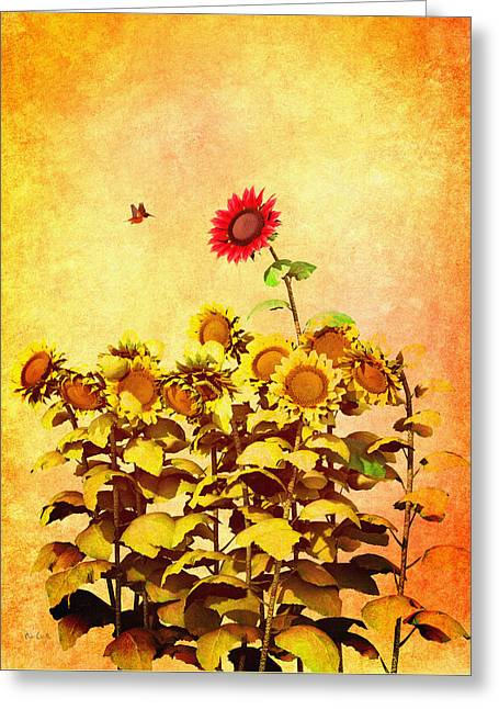 Meditation Digital Greeting Cards - Red Sunflower Greeting Card by Bob Orsillo