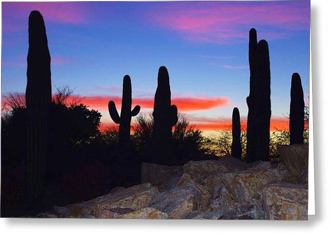 David Rizzo Greeting Cards - Red sunset Greeting Card by David Rizzo