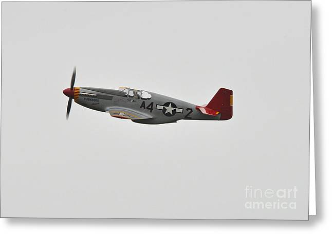 Tuskeegee Greeting Cards - Red Tail Greeting Card by Eugene Kowalski