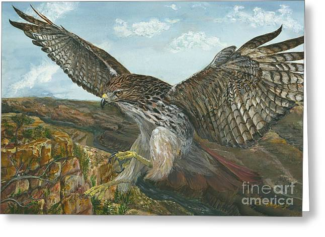 The Grand Canyon Paintings Greeting Cards - Red-Tailed Hawk Greeting Card by Tom Blodgett Jr
