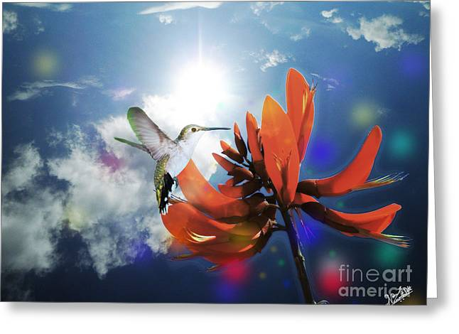 Bedroom Art Greeting Cards - Red Tiger Claw and Hummingbird Greeting Card by Artist Nandika  Dutt