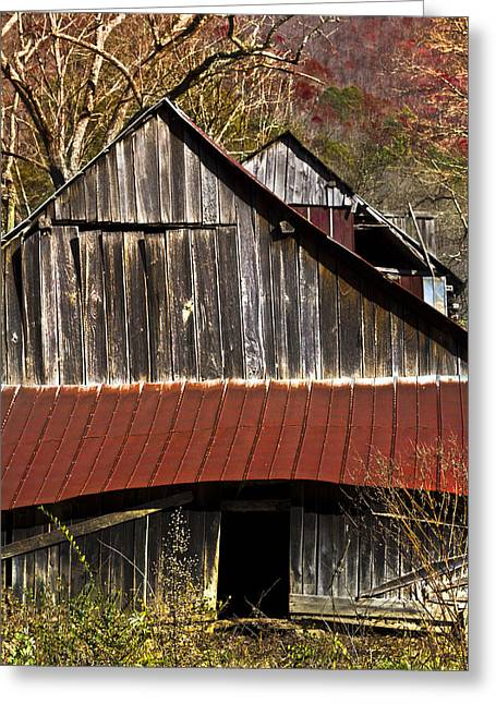 Nantahala Forest Greeting Cards - Red Tin Roof Greeting Card by Debra and Dave Vanderlaan