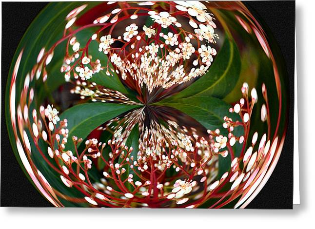 Red Tip Orb I Greeting Card by Jeff McJunkin