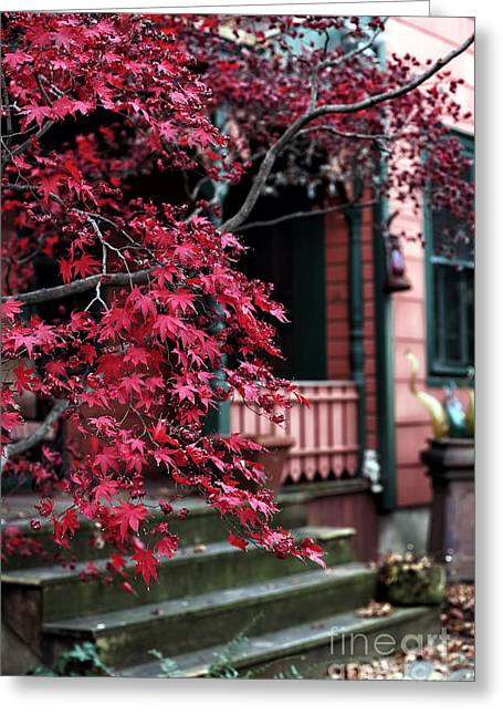 Red School House Photographs Greeting Cards - Red Tree Greeting Card by John Rizzuto
