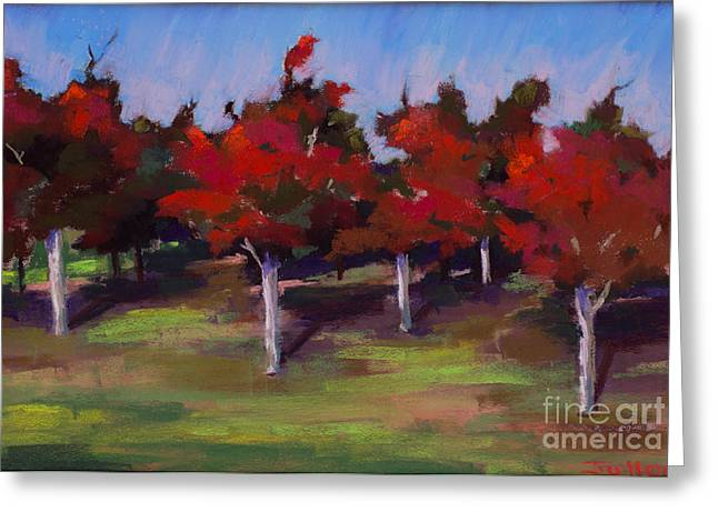 Sonoma Pastels Greeting Cards - Red trees in Sonoma Greeting Card by Mary Jollon